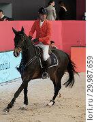 Купить «The CSI 5 W jump at the Madrid Horse Week Featuring: Atmosphere Where: Madrid, Spain When: 26 Nov 2017 Credit: Oscar Gonzalez/WENN.com», фото № 29987659, снято 26 ноября 2017 г. (c) age Fotostock / Фотобанк Лори
