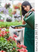 Купить «Woman watering plants», фото № 29997719, снято 24 июля 2012 г. (c) Wavebreak Media / Фотобанк Лори