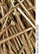 Купить «Close up of male screws», фото № 30000559, снято 23 февраля 2012 г. (c) Wavebreak Media / Фотобанк Лори