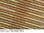 Купить «Sector of golden screws», фото № 30000563, снято 23 февраля 2012 г. (c) Wavebreak Media / Фотобанк Лори