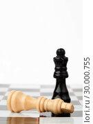 Купить «White and black chess pieces », фото № 30000755, снято 28 февраля 2012 г. (c) Wavebreak Media / Фотобанк Лори
