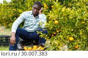 Купить «Tired African-American farmer sitting on citrus plantation», фото № 30007383, снято 15 декабря 2018 г. (c) Яков Филимонов / Фотобанк Лори
