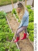 Купить «Pretty blond woman working with a rake», фото № 30020519, снято 4 июля 2013 г. (c) Wavebreak Media / Фотобанк Лори