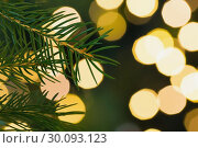 Купить «Fir tree branch with green needles», фото № 30093123, снято 18 июля 2014 г. (c) Wavebreak Media / Фотобанк Лори