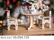 Купить «Gray rat symbol of the new year», фото № 30094135, снято 19 января 2019 г. (c) Типляшина Евгения / Фотобанк Лори
