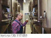 Купить «Manufacturer looking at beer glass in brewery», фото № 30117051, снято 6 апреля 2016 г. (c) Wavebreak Media / Фотобанк Лори