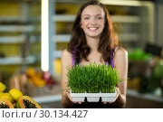 Купить «Shop assistant holding a tray of herbs in health grocery shop», фото № 30134427, снято 4 октября 2016 г. (c) Wavebreak Media / Фотобанк Лори