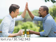 Купить «Friends giving high five to each other while having beer», фото № 30142943, снято 21 ноября 2016 г. (c) Wavebreak Media / Фотобанк Лори
