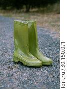 Pair of green wellington boot. Стоковое фото, агентство Wavebreak Media / Фотобанк Лори