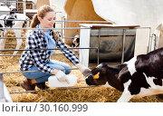 Купить «Female farm worker feeding calves», фото № 30160999, снято 8 августа 2018 г. (c) Яков Филимонов / Фотобанк Лори