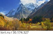 Купить «Autumn», фото № 30174327, снято 13 октября 2014 г. (c) александр жарников / Фотобанк Лори