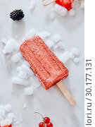 Berry black currant ice cream sorbet popsicles in color of the year 2019 Living Coral Pantone on crushed ice over a marble background with berries, top view. Стоковое фото, фотограф Ярослав Данильченко / Фотобанк Лори
