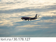 Купить «Nokair flying to landing in the night sky», фото № 30178127, снято 30 ноября 2016 г. (c) Игорь Жоров / Фотобанк Лори