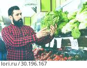 Купить «Young male seller offering salad», фото № 30196167, снято 15 ноября 2016 г. (c) Яков Филимонов / Фотобанк Лори
