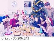 Купить «Large family making numerous photos during Christmas dinner», фото № 30206243, снято 27 мая 2019 г. (c) Яков Филимонов / Фотобанк Лори