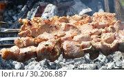 Купить «Grilled appetizing kebab cooking on metal skewers», видеоролик № 30206887, снято 18 июля 2019 г. (c) FotograFF / Фотобанк Лори