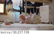 Купить «Eight months child on the floor at home», видеоролик № 30217139, снято 24 июня 2019 г. (c) Данил Руденко / Фотобанк Лори