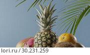 Купить «Tropical leaves and ripe pineapple with fresh natural exotic fruits on a wooden table on a blue background. Vertical panoramic motion 4K UHD video, 3840, 2160p.», видеоролик № 30231259, снято 4 июля 2018 г. (c) Ярослав Данильченко / Фотобанк Лори