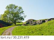 Купить «Красивый пейзаж. Крепость Свеаборг, или Суоменлинна. Хельсинки. Финляндия», фото № 30231419, снято 19 сентября 2018 г. (c) E. O. / Фотобанк Лори