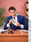 Купить «Young handsome lawyer working in his office», фото № 30238087, снято 10 сентября 2018 г. (c) Elnur / Фотобанк Лори