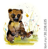 Bear cubs. Watercolor hand drawing illustration. Стоковая иллюстрация, иллюстратор Мария Кутузова / Фотобанк Лори