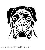 Купить «Portrait of a bullmastiff», иллюстрация № 30241935 (c) Сергей Лаврентьев / Фотобанк Лори