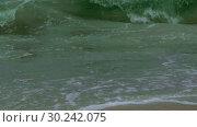 Купить «Rough sea with snow storm. Winter sea storm wave strikes the sandy coast. Coastal seascape», видеоролик № 30242075, снято 8 августа 2018 г. (c) Некрасов Андрей / Фотобанк Лори