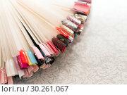 Купить «Коллекция пластиковых разноцветных образцов ногтей для маникюра лежит веером на столе в косметическом салоне», фото № 30261067, снято 28 февраля 2019 г. (c) Светлана Попова / Фотобанк Лори