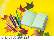 Купить «Autumn still life. Opened book, colored pencils and autumn colored maple leaves on a yellow background», фото № 30266923, снято 18 сентября 2018 г. (c) Катерина Белякина / Фотобанк Лори