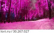 Купить «Christmas (New Year holidays) decoration in Moscow (at night), Russia-- Sparrow Hills (Vorobyovy Gory)», видеоролик № 30267027, снято 7 марта 2019 г. (c) Владимир Журавлев / Фотобанк Лори