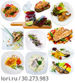 Different dishes with fish served at plates isolated on white background. Стоковое фото, фотограф Яков Филимонов / Фотобанк Лори