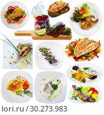 Купить «Different dishes with fish served at plates isolated on white background», фото № 30273983, снято 16 июля 2019 г. (c) Яков Филимонов / Фотобанк Лори