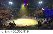 Купить «Катание детей на лошади по арене перед представлением в цирке», видеоролик № 30300819, снято 12 марта 2019 г. (c) Кекяляйнен Андрей / Фотобанк Лори