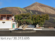 Купить «Lanzarote countryside. Canary Islands. Spain», фото № 30313695, снято 13 июня 2008 г. (c) Знаменский Олег / Фотобанк Лори