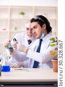 Купить «Two chemists working in the lab», фото № 30328667, снято 9 января 2019 г. (c) Elnur / Фотобанк Лори