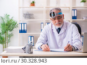 Купить «Aged male doctor laryngologist working in the clinic», фото № 30328943, снято 18 декабря 2018 г. (c) Elnur / Фотобанк Лори