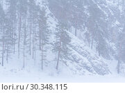 Купить «Mountain landscape during a snowfall», фото № 30348115, снято 9 марта 2019 г. (c) Евгений Харитонов / Фотобанк Лори