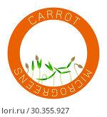 Microgreens Carrot. Seed packaging design, round element in the center. Стоковая иллюстрация, иллюстратор Юлия Фаранчук / Фотобанк Лори