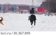 Купить «Winter time. A woman riding a horse in a village with a dog running near by them», видеоролик № 30367899, снято 23 июля 2019 г. (c) Константин Шишкин / Фотобанк Лори