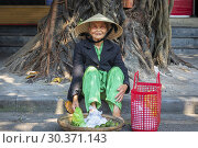 Old Vietnamese woman selling a small quantity of fruit from a basket, on the street in the old fruit market, Hoi An, Quang Nam Provence, Vietnam, Asia. Hoi An is also known as Fai-fo and Faifoo. (2019 год). Редакционное фото, фотограф Findlay Rankin / age Fotostock / Фотобанк Лори