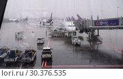 Купить «Airbus 320 on service in Suvarnabhumi airport», видеоролик № 30376535, снято 11 ноября 2017 г. (c) Игорь Жоров / Фотобанк Лори