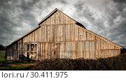 Купить «Old Abandoned Barn, Color Image», фото № 30411975, снято 19 декабря 2015 г. (c) easy Fotostock / Фотобанк Лори