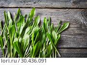 Ramsons, wild garlic on a wooden table. Стоковое фото, фотограф Oksana Zh / Фотобанк Лори