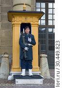 Купить «Шведский солдат на посту у Королевского дворца. Стокгольм, Швеция», фото № 30449823, снято 9 марта 2019 г. (c) Виктор Карасев / Фотобанк Лори