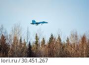 Купить «Заходящий на посадку военный самолет Су-27», фото № 30451267, снято 22 августа 2019 г. (c) Сергей Цепек / Фотобанк Лори