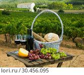 Купить «Red wine with cheese, bread in basket and grapes», фото № 30456095, снято 25 мая 2019 г. (c) Яков Филимонов / Фотобанк Лори
