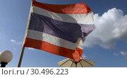Купить «Beautiful flag evolving wind», видеоролик № 30496223, снято 28 февраля 2019 г. (c) Ekaterina Demidova / Фотобанк Лори