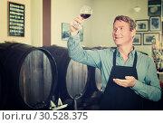 Купить «man with glass of wine in wine cellar», фото № 30528375, снято 22 сентября 2019 г. (c) Яков Филимонов / Фотобанк Лори