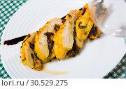 Купить «Baked turkey breast stuffed with prunes», фото № 30529275, снято 16 октября 2019 г. (c) Яков Филимонов / Фотобанк Лори