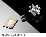 Купить «Concept balance between processor and transistors», фото № 30529911, снято 29 января 2010 г. (c) Tryapitsyn Sergiy / Фотобанк Лори